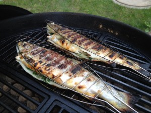 Forelle, Fisch, Grill